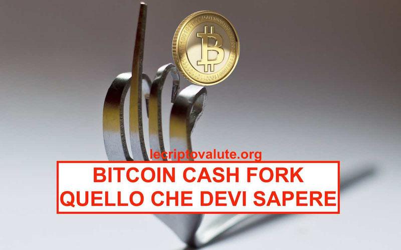 Bitcoin Cash Fork spiegato facile mentre il Bitcoin crolla guida