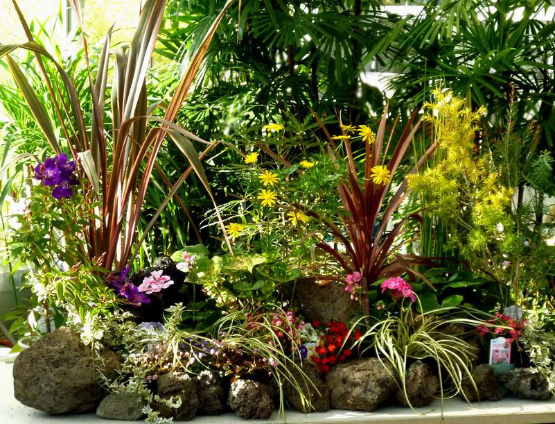 ラストは講師が作品の前に石を配置・・ふん囲気がガラリと変わって見事な「テーブル・ガーデン」完成!