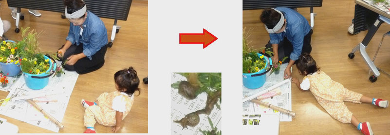 【左】幼児はやや傍観者 →【中】お花の中に ちっちゃなカタツムリ発見! → 【右】幼児はガゼン腹這いになり熱心に見つめ出す、