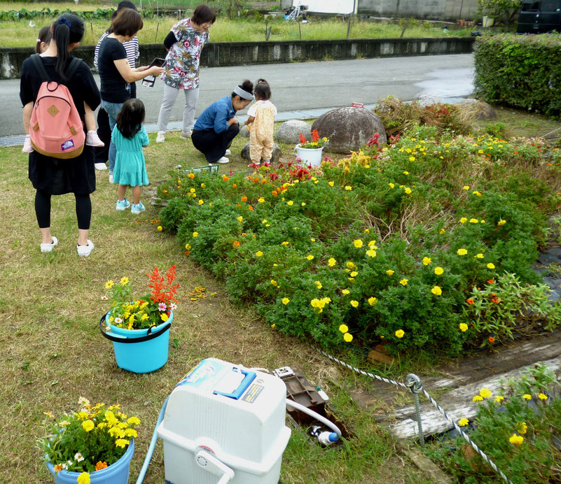 公園でお花を摘むママと幼児