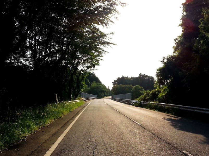 東総有料道路