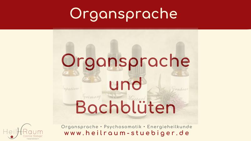 Bach-Blüten, Organsprache