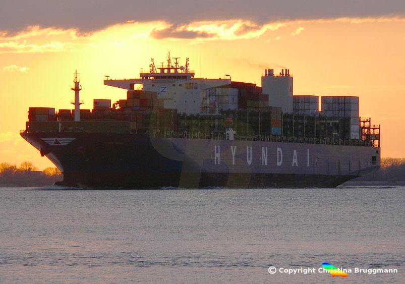 Containerschiff MSC  MARS bei Sonnenuntergang auf der Elbe zum Erstanlauf in Hamburg