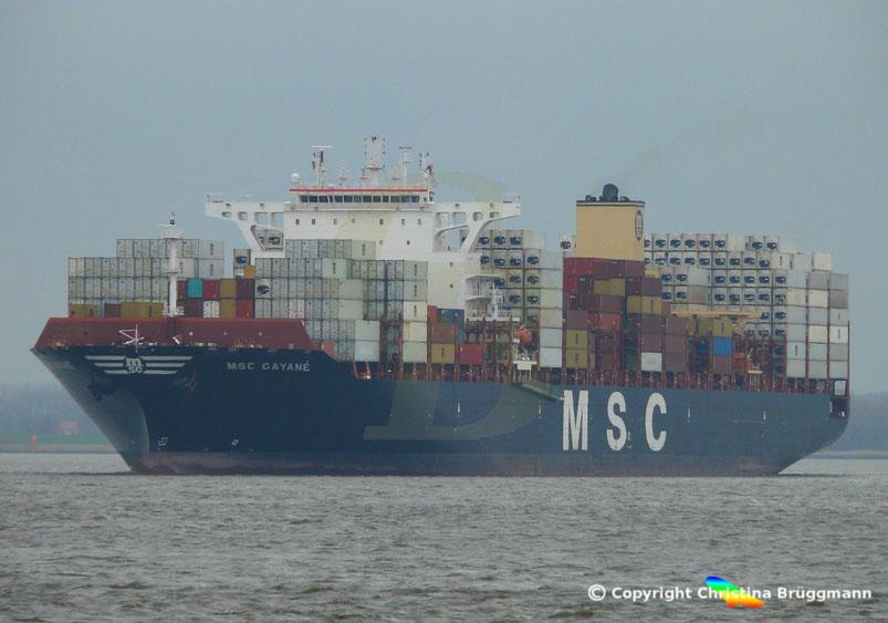 """Containerschiff """"MSC FILLIPPA"""" auf der Elbe 13.01.2017"""