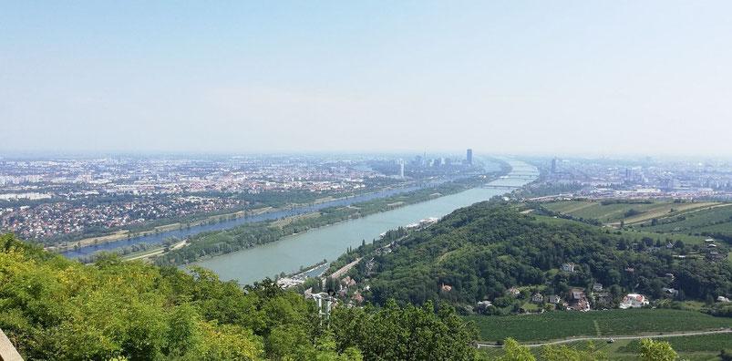 Leopoldsberg Ausblick auf die Donau und Wien