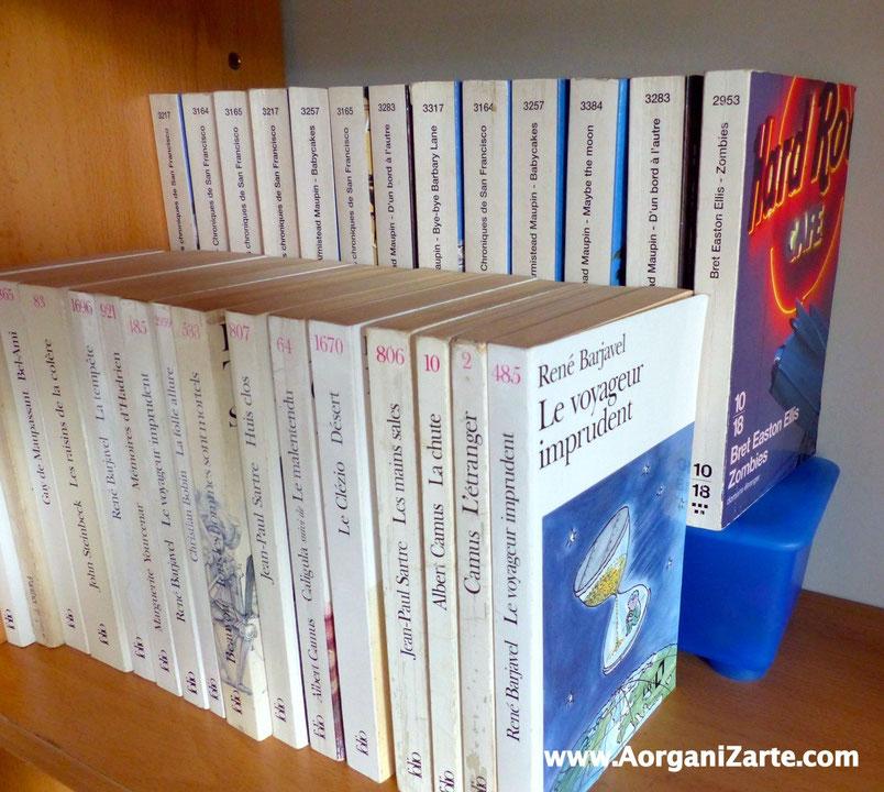 Coloca los libros en doble fila sobre un soporte para ver los que hay detrás - AorganiZarte
