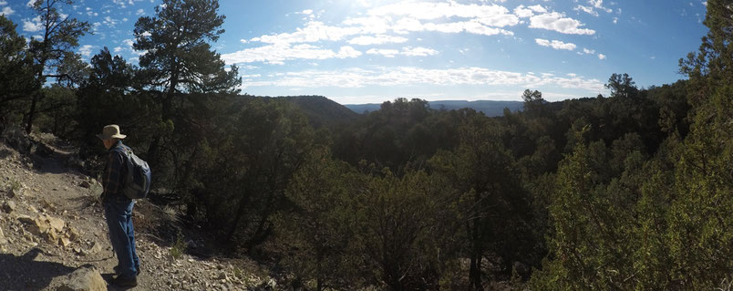 Crest Trail, Sandia Mountains, Cibola National Forest, New Mexico, Wilderness