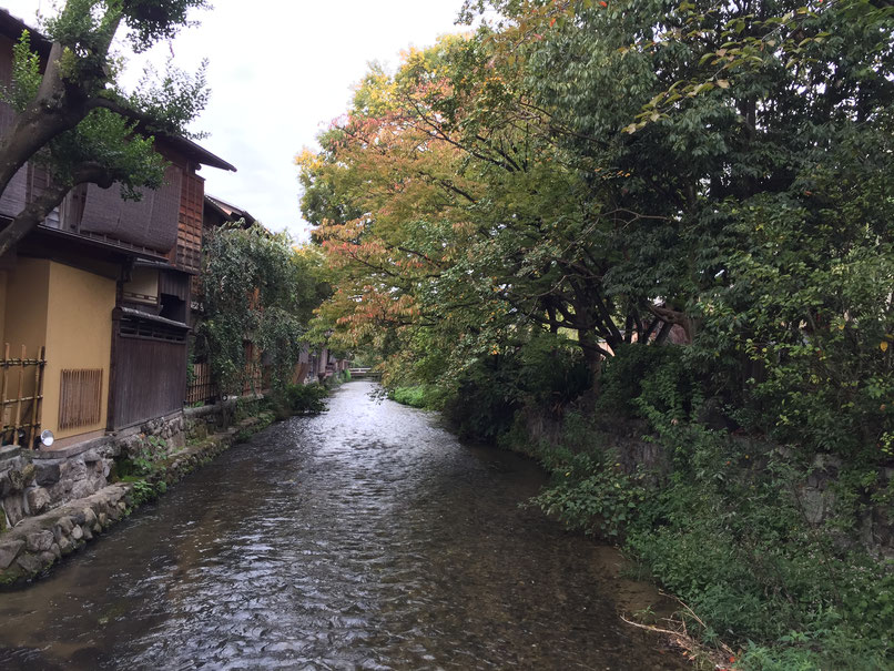 Kyoto - 7 Day Itinerary For Active Families with Small Kids - Shinbashi-Dori Walk
