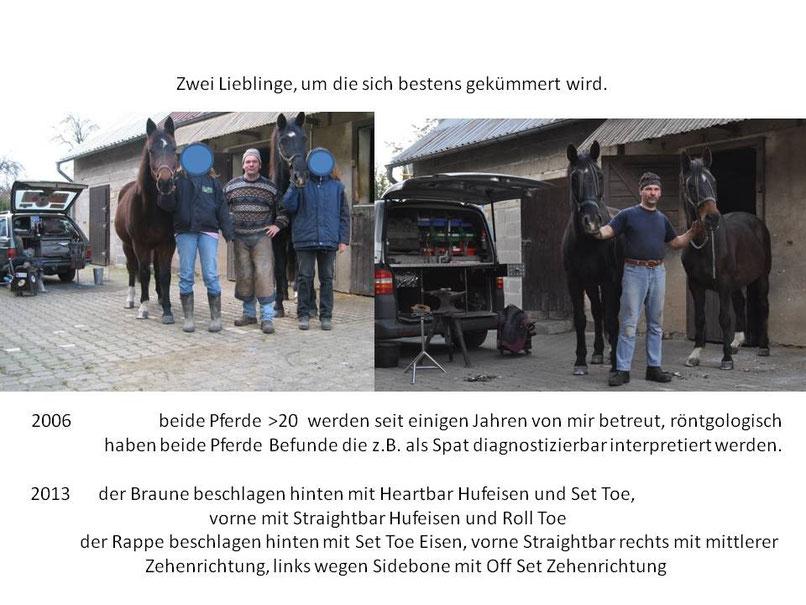 Solang es noch keine Rollstühle für Pferde gibt, sind es orthopädische Hufbeschlage die uns helfen.  2014, 2015 und jetzt gehts  in Richtung 2016