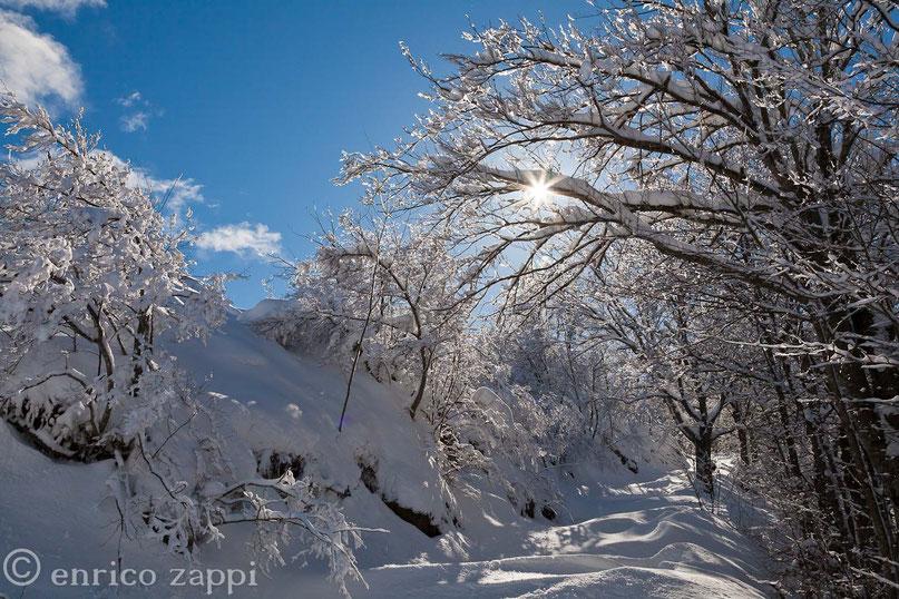 L'inverno al Parco Nazionale delle Foreste Casentinesi, con la neve ed il ghiaccio, da l'idea di un ambiente incantato con una magica atmosfera
