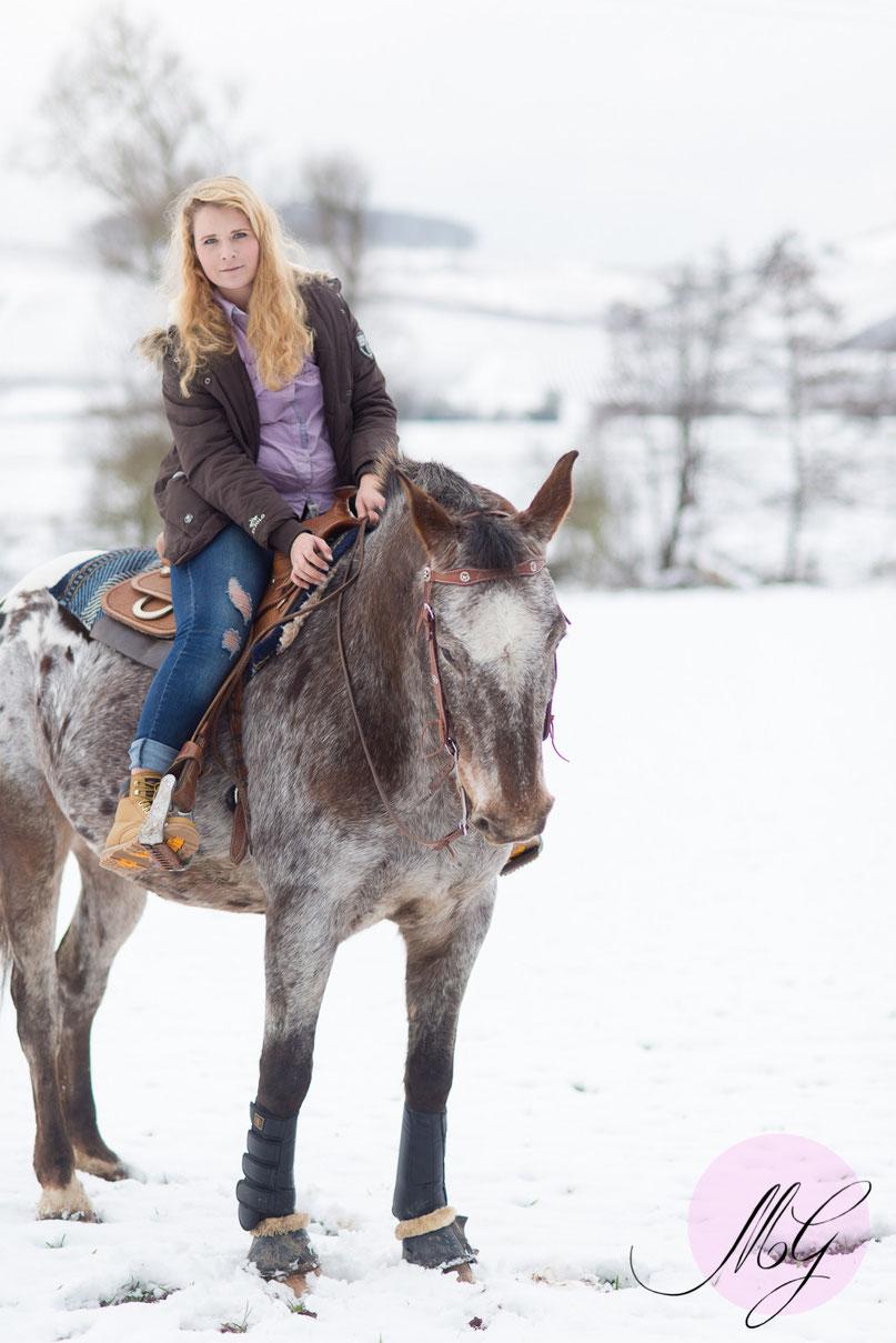 Fotoshooting, Fotograf, Bad Kreuznach, Guldental, Jasmin Baldauf, Tierfotos, Pferdefoto