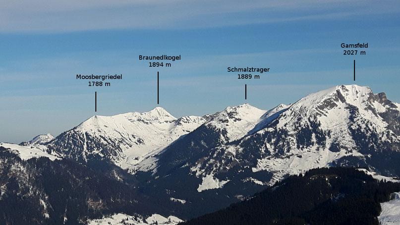Moosbergriedel (1788 m), Braunedlkogel (1894 m), Schmalztrager (1889 m)  und Gamsfeld (2027 m) von Süden - vom Skigebiet Gosau-Rußbach - aus gesehen
