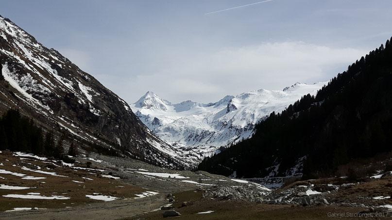 Obersulzbachtal - Blick taleinwärts zurück zum Großen Geiger (3360 m)