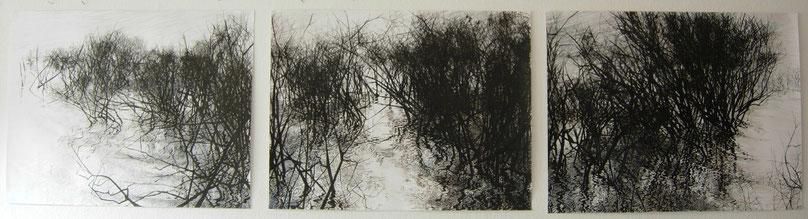 """""""Wriakhörnsee"""", Tusche und Aquarell,60 x 250 cm 2010, verkauft"""