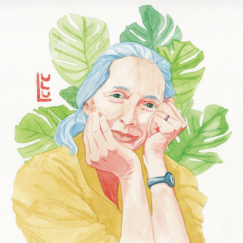 Jane Goodall, Portrait, Jane Goodall Portrait, Aquarelle, Wasserfarbe, Watercolor, Frauenportrait, Editorial