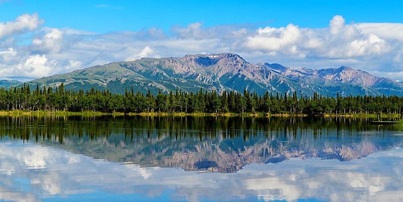 alaska tour view