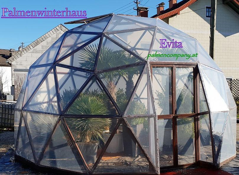 Ein Winterhaus für Palmen