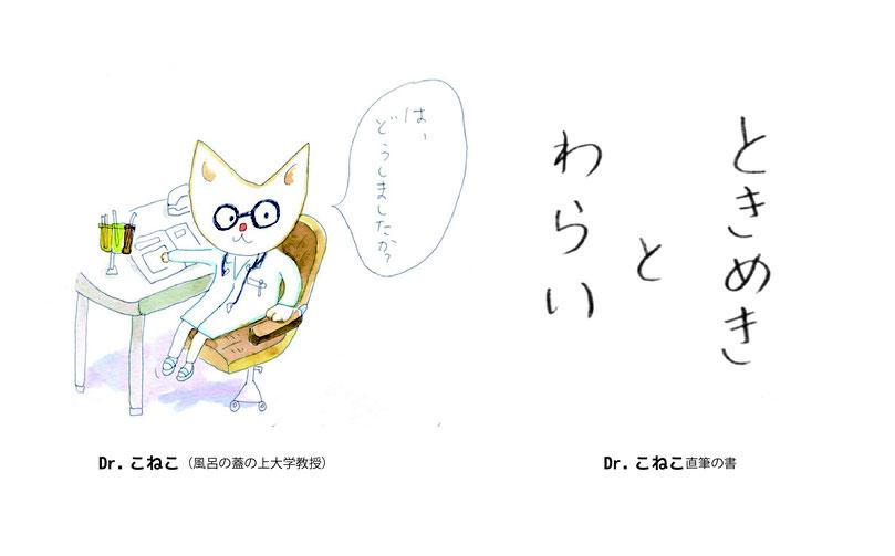 Dr.こねこ(風呂の蓋の上大学教授)