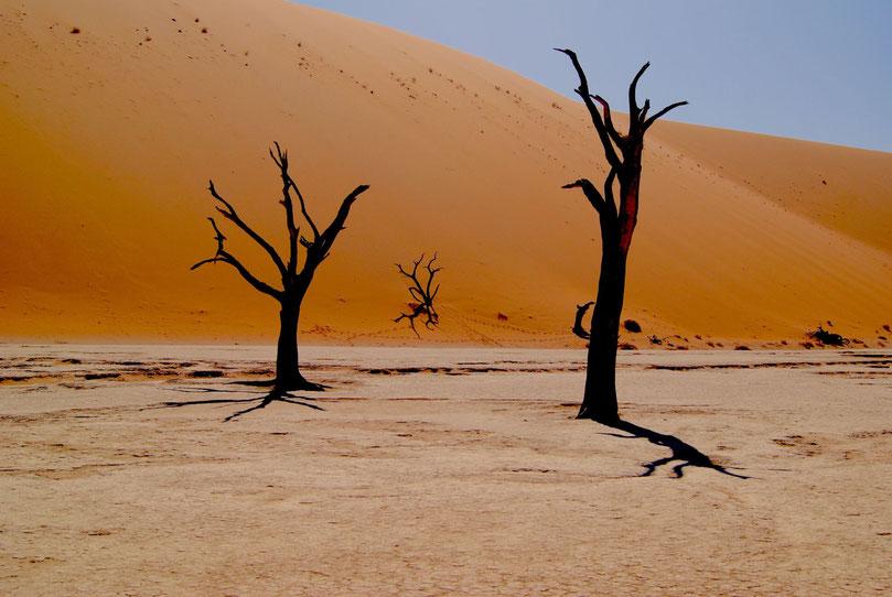 Namibia Orte schaffen geistiges Wohlbefinden -  Dead Vlei - Photo by Marcelo Novais on Unsplash Namibia
