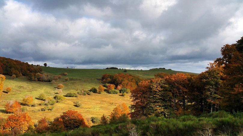 Paysage d'automne au gîte du Carteyrou (Séjour Aubrac)