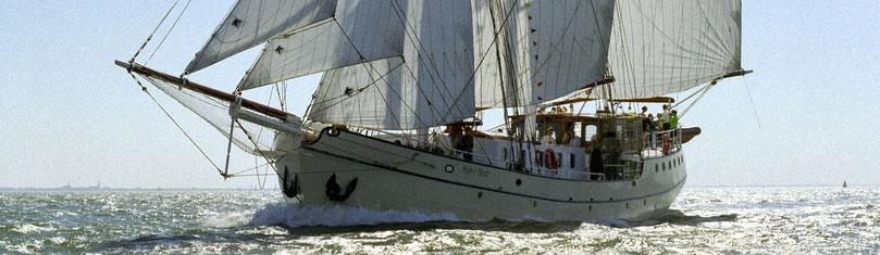 Bild - Segelschiff vor Kroatiens Küste
