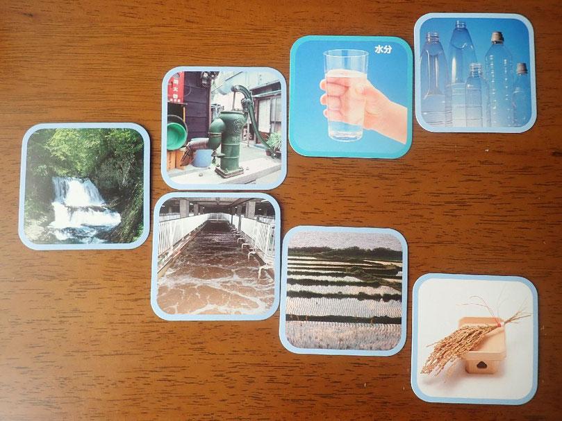 生物多様性まんだらカードゲームのカード