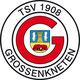 TSV Großenkneten