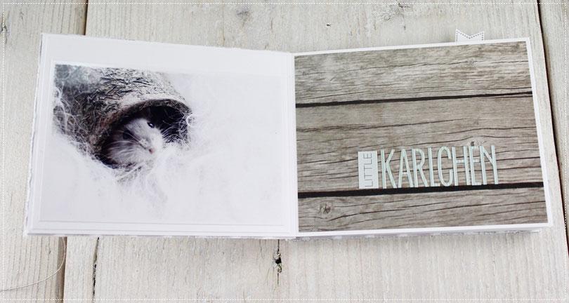 Scrapbook Minialbum Hamster, Fotoalbum, Fotografie, Geschenk