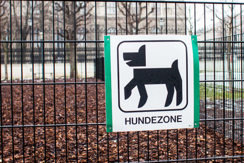 Pollux & Coco unterwegs am Heldenplatz in Wien bei der Hofburg