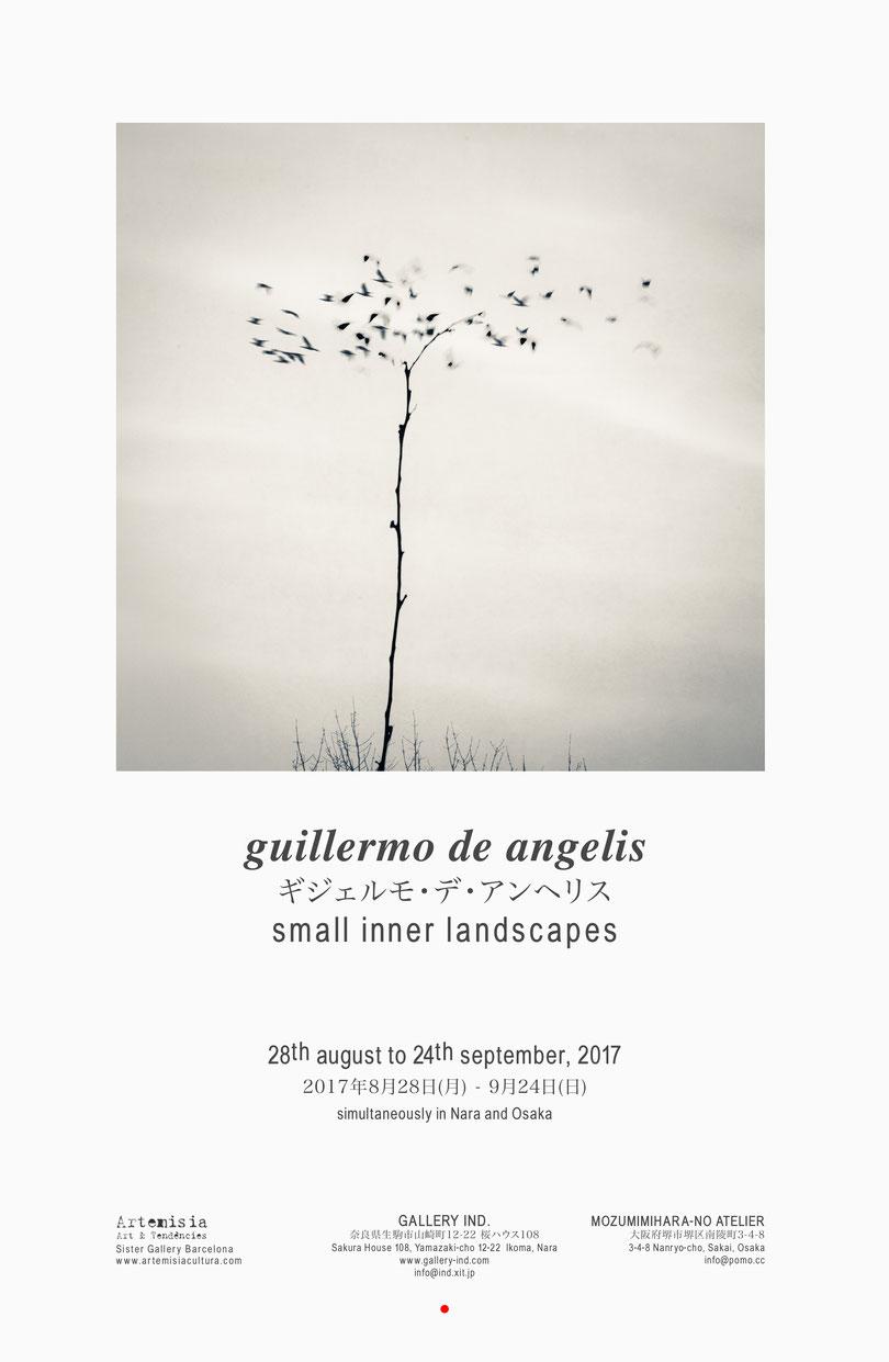GALLERY IND.では一昨年、昨年に続きアルゼンチン出身の写真家ギジェルモ・デ・アンヘリスの3回目の個展を開催いたします。