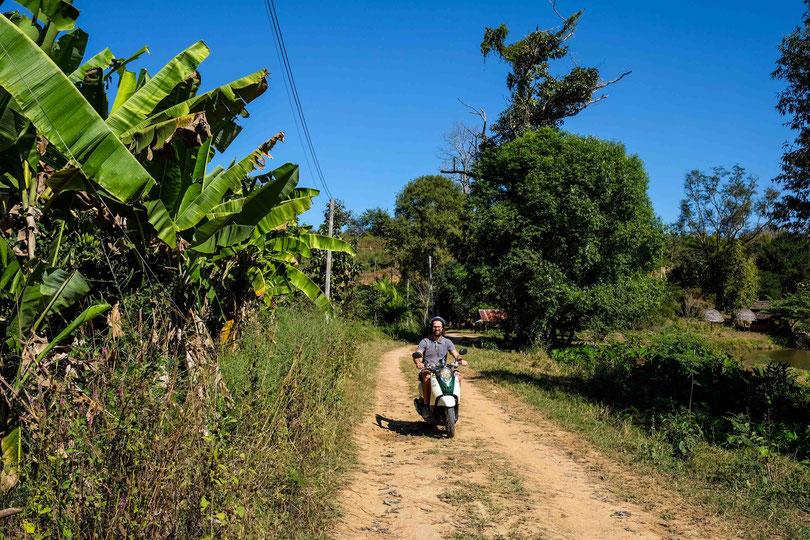Die Bananen Plantagen vom Landsplit