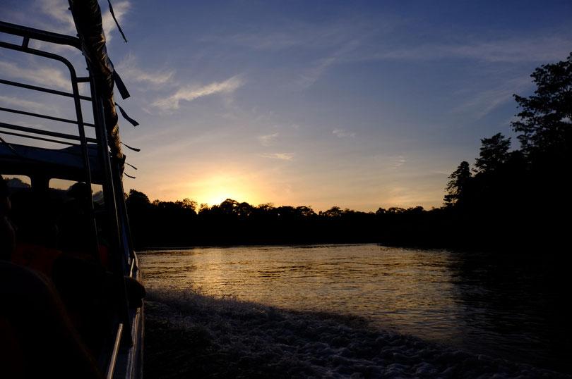 Sonnenuntergang am Kinabatang River