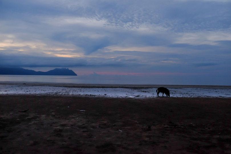 Ein Blick gen Sonnenuntergang, bevor die Nachtwanderung beginnt