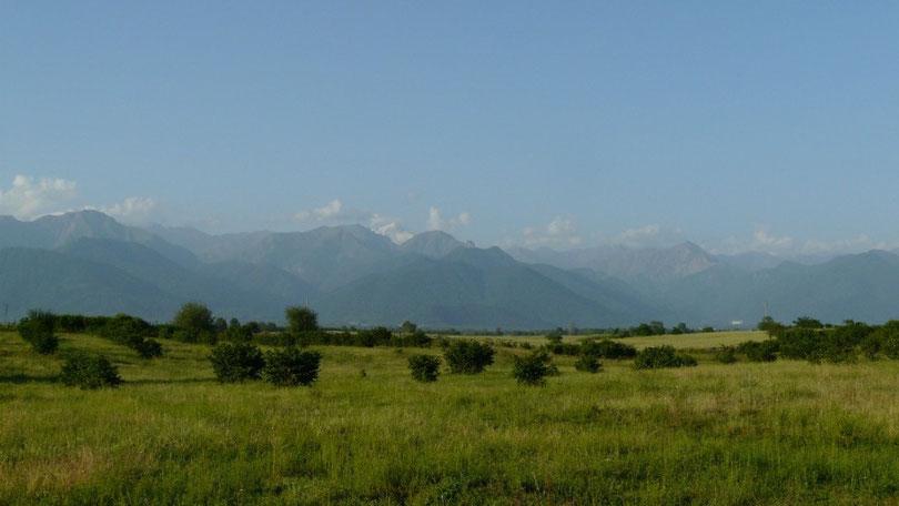 Mais la vegetation fini par reprendre le dessus. Au loin les cimes enneigees du Caucase culminent a plus de 4000m