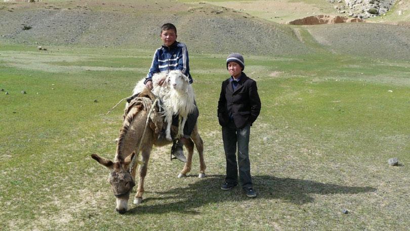 De jeunes bergers qui ramenent la brebis égarée?