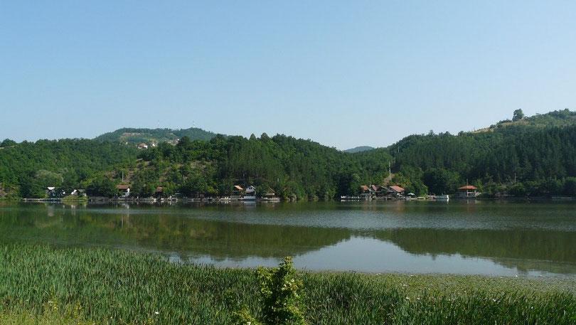 La campagne serbe, tres verdoyante malgre la chaleur