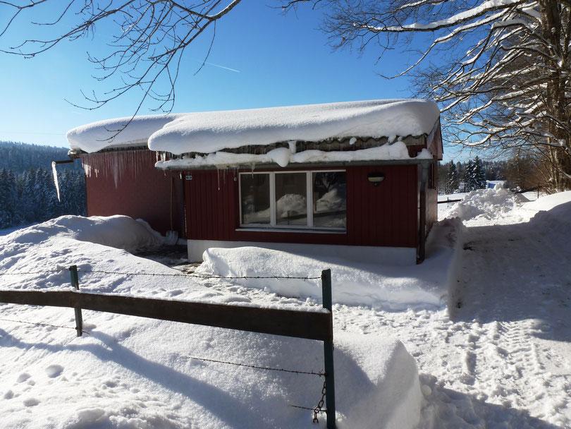 Ski fahren Schlitteln, Schneewanderungen, Langlauf, Schlittenhunde