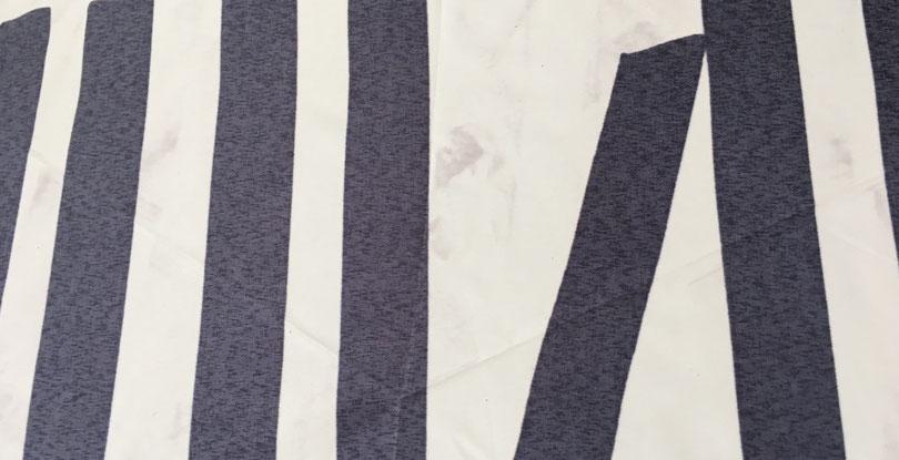 傘生地を裏側から撮影、中央の薄グレーに見える部分が移行昇華。