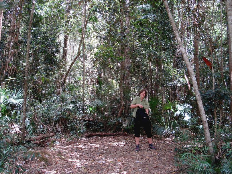 Ostküste, Queensland, Australien
