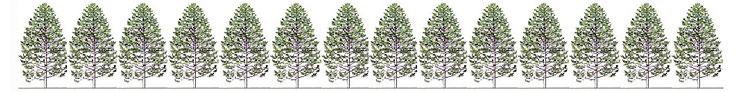 きとぷらすは、枕、サシェ、木の壁など、『木』のデザインに取り組み、日本の安心安全な木を日常生活に取り入れることを目指します