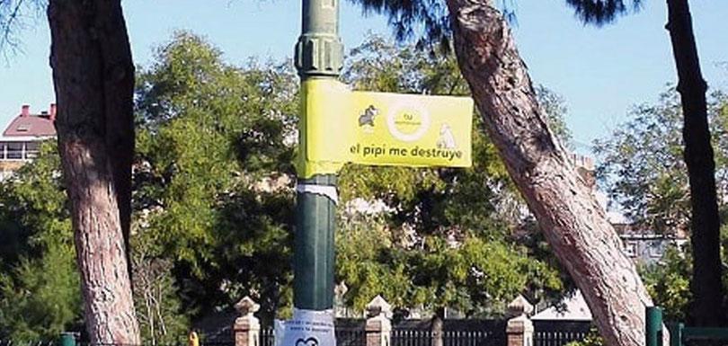 El  pipi de los perros  destruye, campaña del  Ayuntamiento de València para concienciar a los propietarios de mascotas.