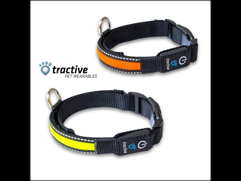 Tractive LED Halsband