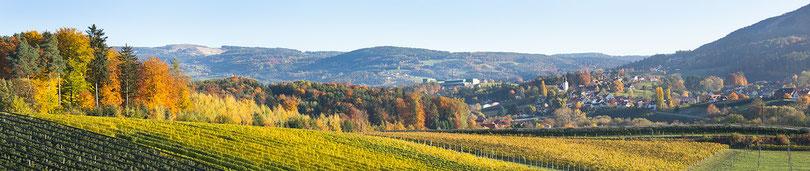 Puch bei Weiz, Panoramafoto, Leinen