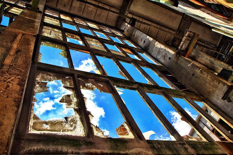 Fensterfront der Produktionshalle