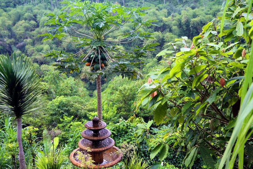 Tropischer Gewürz- und Früchtegarten bei Ubud