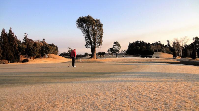 ゴルフプレイ風景