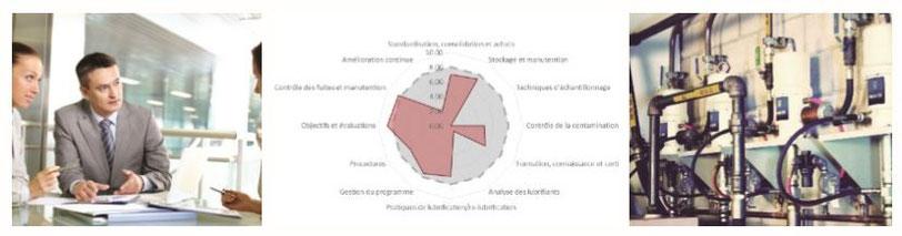 Analyse der vorhandenen Schmierbedingungen, der Handhabung von Schmiermitteln usw.; Darstellung der Ergebnisse im Netzdiagramm