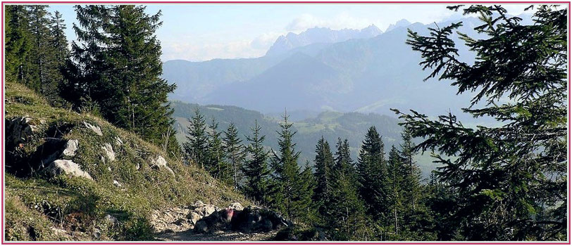 Blick vom Spitzstein zum Wilder Kaiser, Grenze Bayern Tirol