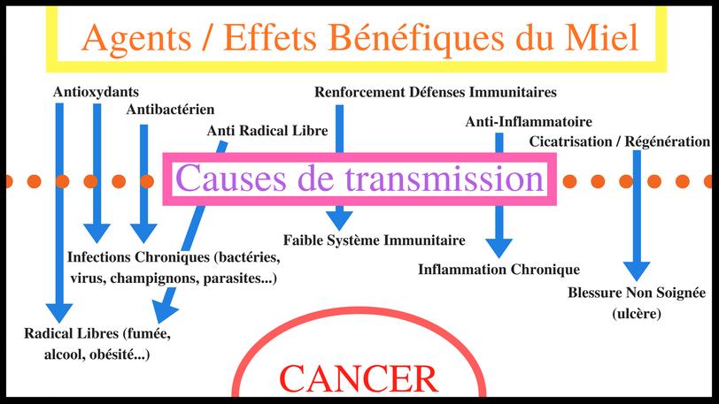 Relation entre les effets bénéfiques du miel et les causes de transmission du cancer