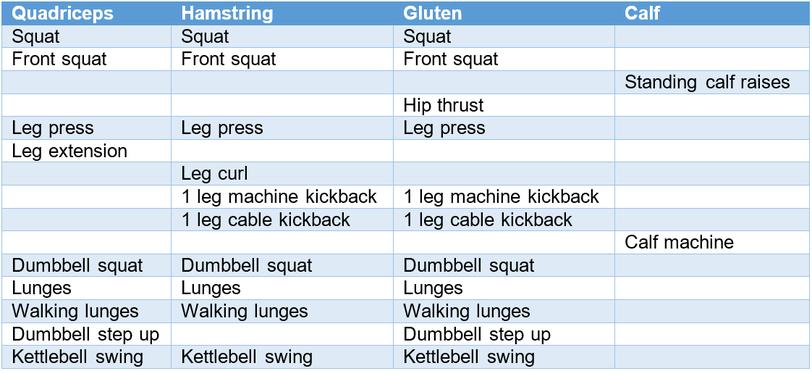 leg legs exercises squat leg press curl extension lunges